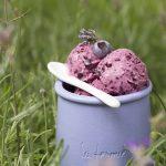 Yoghurtijs met blauwe bessen