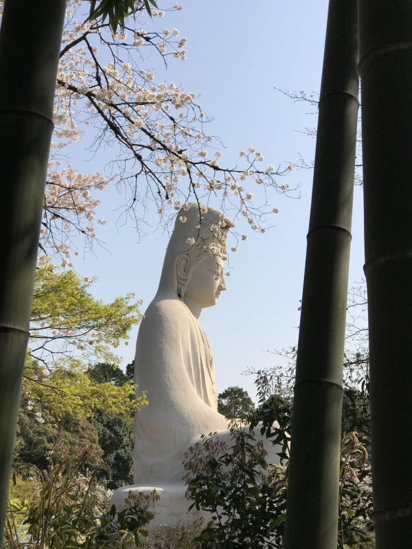 Kyoto cultureel - Boedha